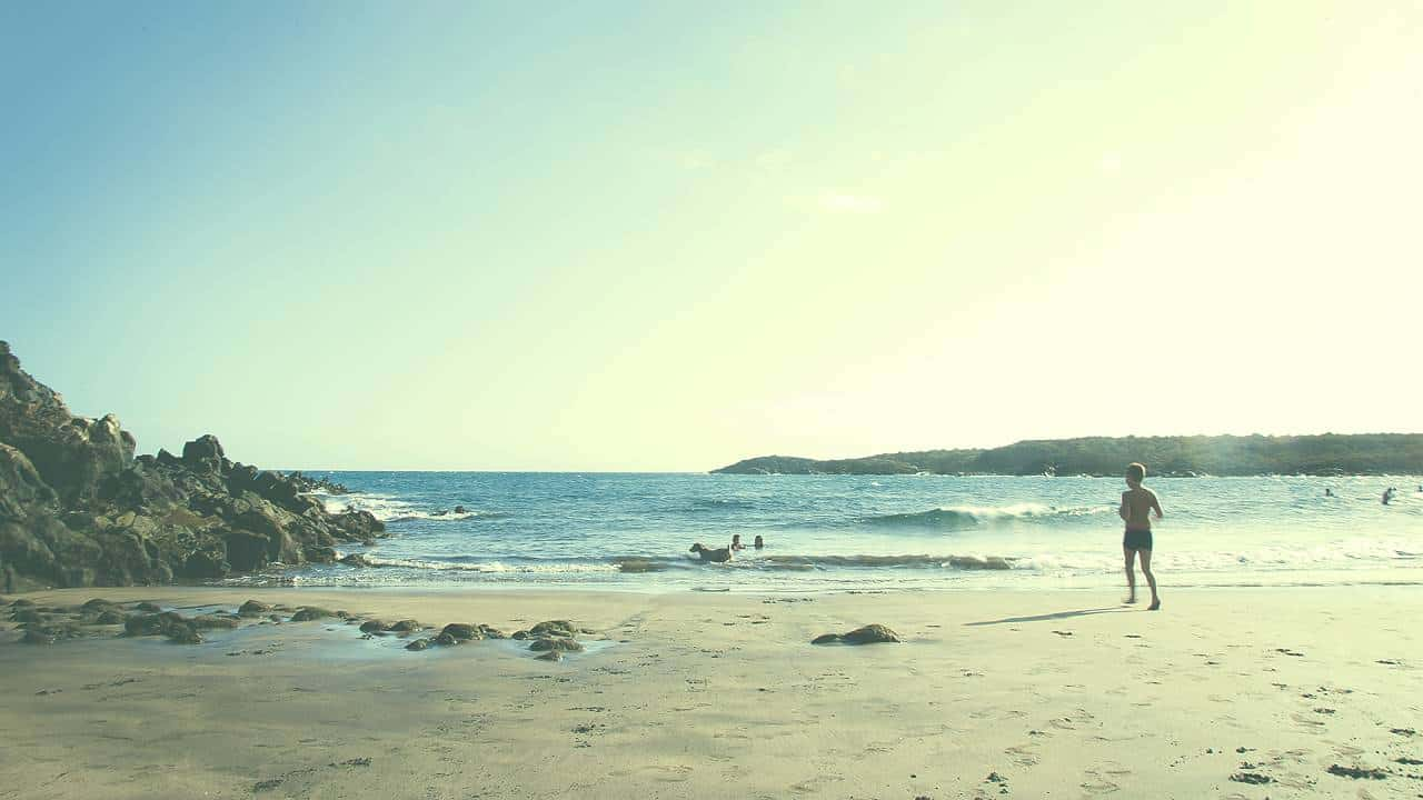 Chirinquito_Manimal Beach_1